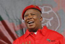Julius malema spied by guptas