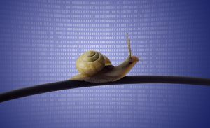 A snail on the internet cable implying slower speeds and a throttled connection