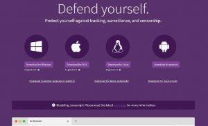 an image of the Tor browser screenshot